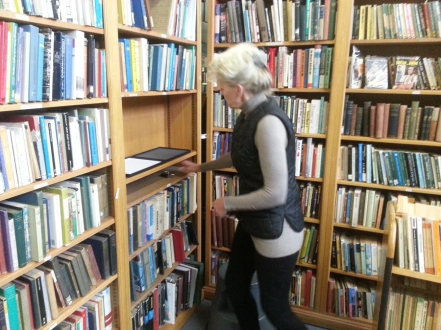Helena g Anderson installs at Plurabelle Books