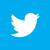 twitter-bird-white-on-blue_50sq